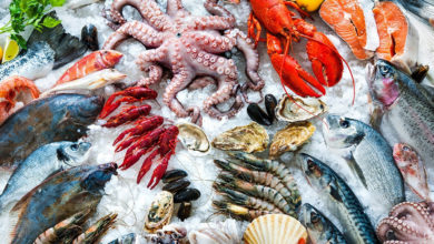 Photo of Seafood Exports Inflated 8% to $317.307 Million in 3 Quarters