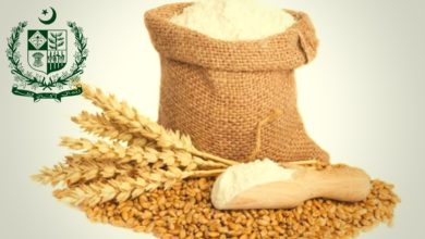 Photo of The ECC Approved Wheat Import for Private Sectors