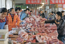 Photo of Pakistani Beef to Enter Chinese Market
